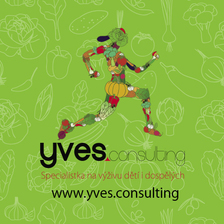YVES Consulting logo