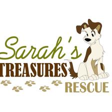 Sarah's Treasures Rescue logo